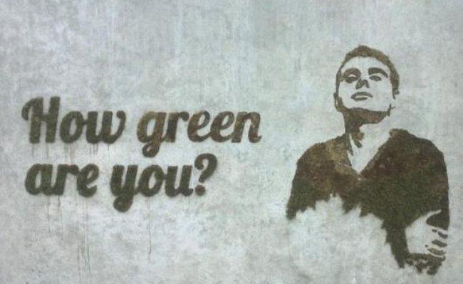 man-moss-graffiti