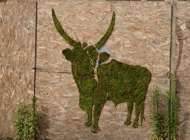moss-cow-graffiti