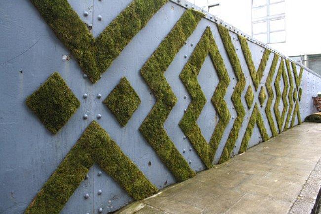 wall-moss-design