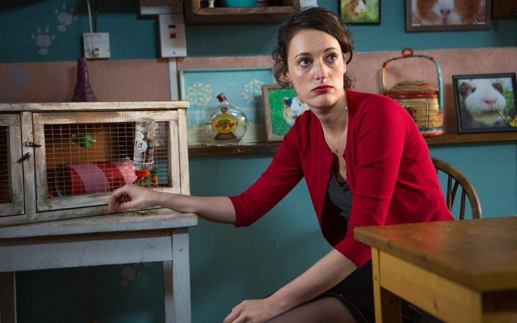 11405471-high-fleabag-1024x683