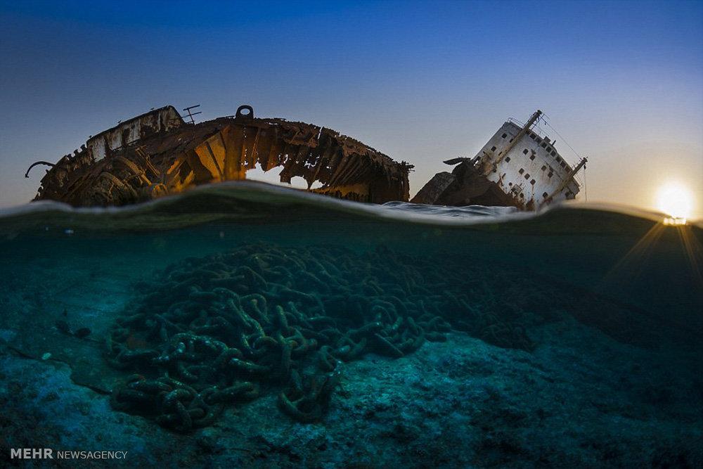 Φώτο-αφιέρωμα: Κάτω από τη θάλασσα..