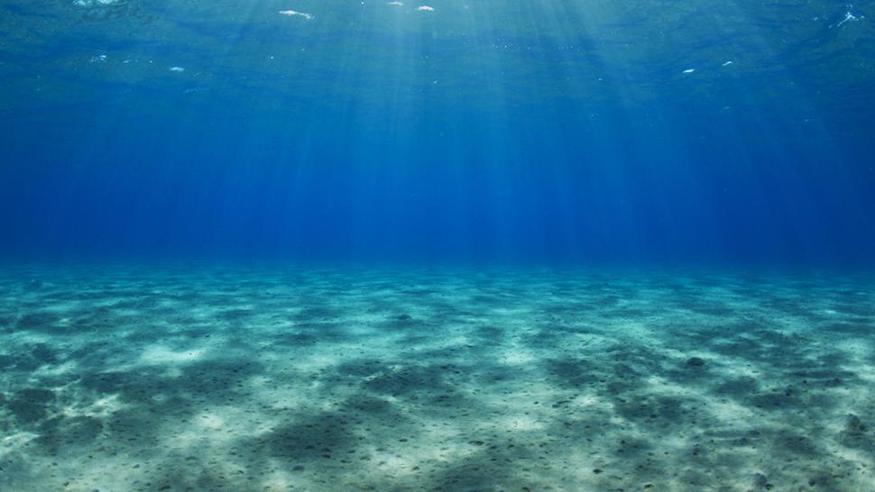 Ωκεανοί: 5 facts που θα σου τραβήξουν την προσοχή!