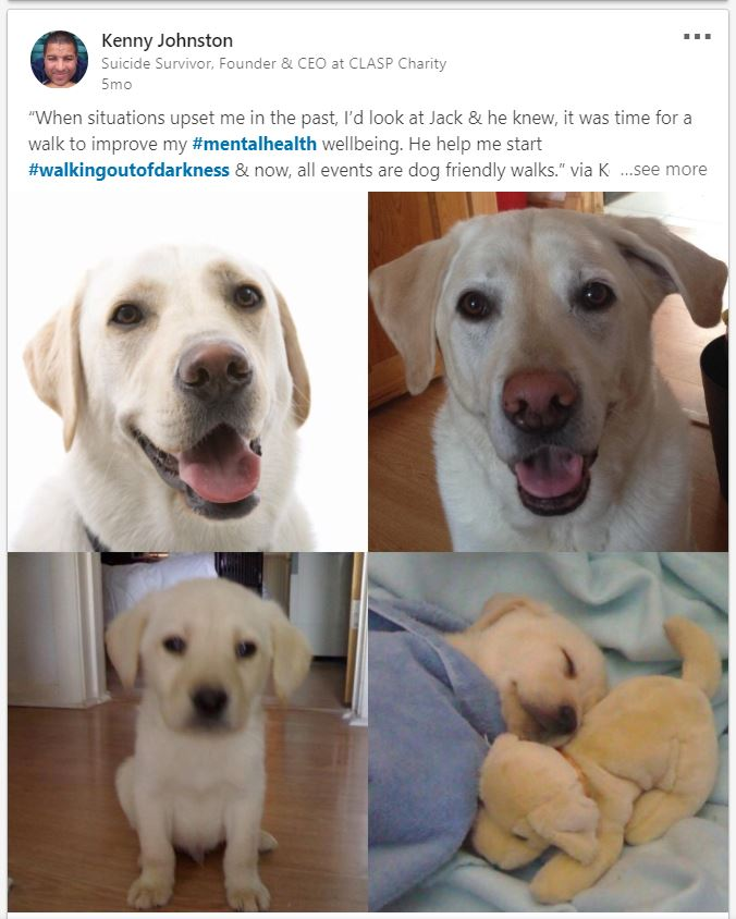 Έχει ο σκύλος μου θέση στο LinkedIn;!